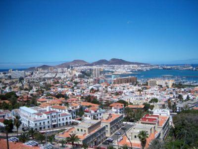 Canarycation auf Las Palmas